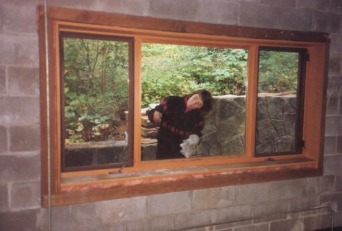 Years before the raven arrived, Linda was checking the windows ...