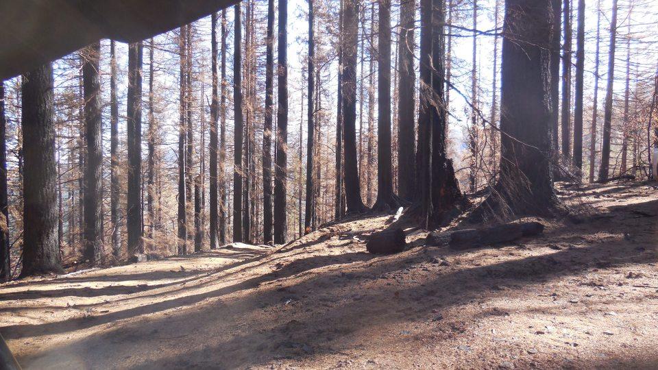 Basin Road